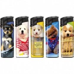5 Piezo Hunde Druck
